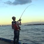 太刀魚ルアー釣り重要なポイント テクニックやアクション(仕掛けの動かし方)